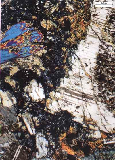 trap magmatism and ore formation in the siberian noril sk region ryabov v v shevko a ya gora m p
